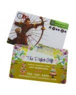 Premium Plastic Business Cards